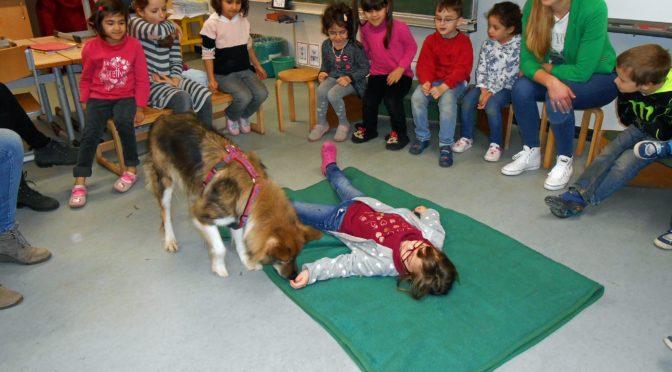 Schulhündin Frida zu Gast in der 1a